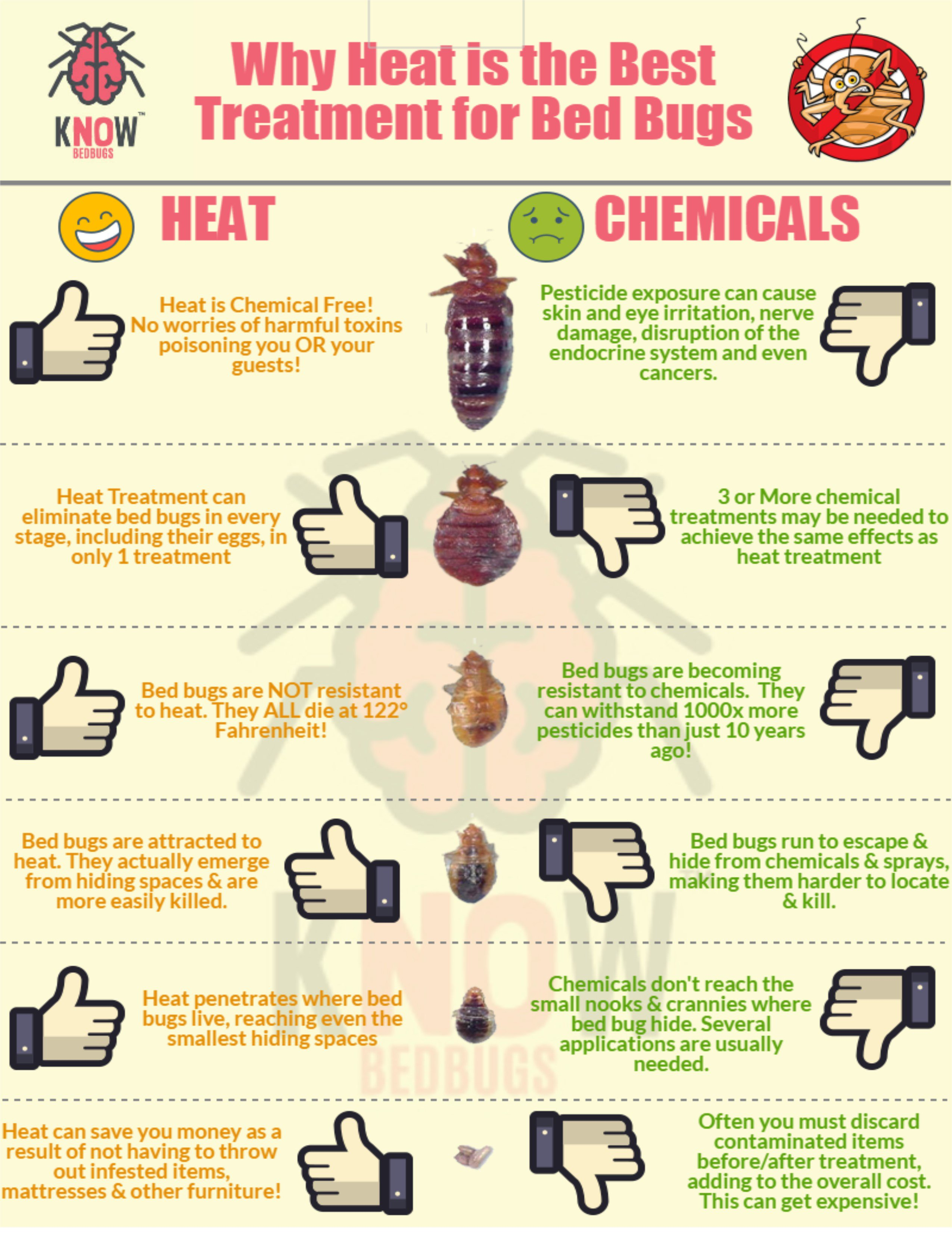 Heat Vs Pesticides The Best Bed Bug Treatment For Hotels